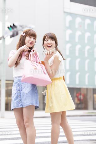 ショッピングを楽しむ女性2人の写真素材 [FYI00465779]