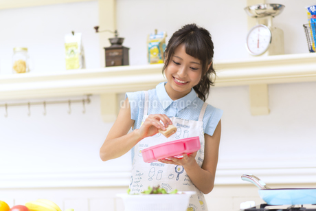 お弁当を作る女性の写真素材 [FYI00465807]