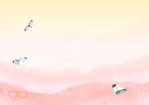 春の光と紋白蝶の素材 [FYI00466025]