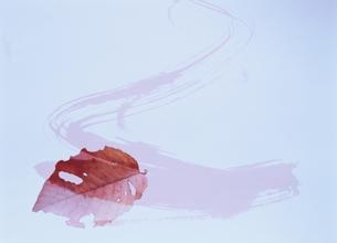 落ち葉とペインティングの合成の写真素材 [FYI00466059]