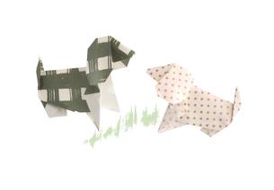 折り紙の犬の素材 [FYI00466116]