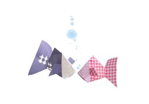 折り紙の金魚の素材 [FYI00466118]