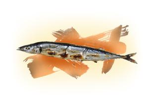 炭で焼かれている秋刀魚の素材 [FYI00466175]