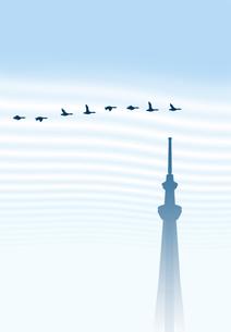 秋空を飛ぶ渡り鳥とスカイツリーの素材 [FYI00466255]