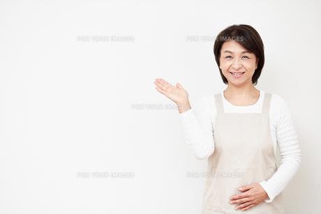 案内する主婦の写真素材 [FYI00466690]