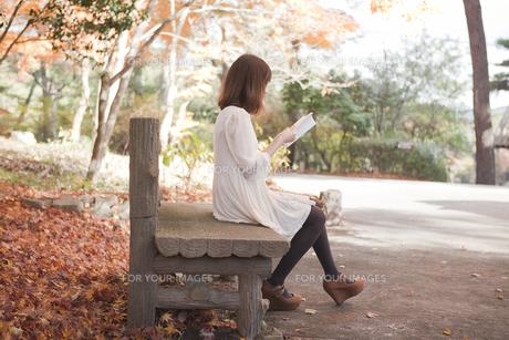 秋の紅葉した公園のベンチで読書をする女性の写真素材 [FYI00467223]