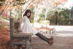 秋の紅葉した公園のベンチで座っている女性の素材 [FYI00467225]