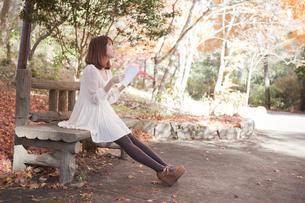 秋の紅葉した公園のベンチで読書をする女性の素材 [FYI00467229]