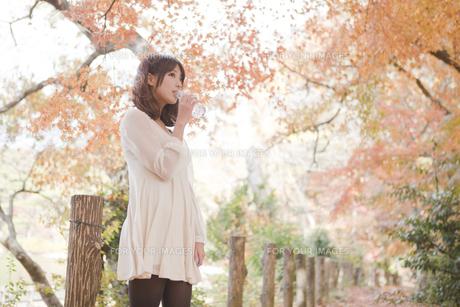 秋の紅葉した公園で立ってペットボトルの水を飲んでる女性の素材 [FYI00467239]