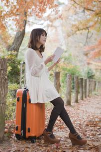 秋の紅葉した公園でトランクに座って本を読む女性の素材 [FYI00467240]