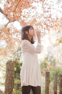 秋の紅葉した公園で立ってペットボトルの水を飲んでる女性の素材 [FYI00467241]