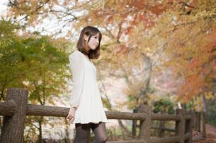 秋の紅葉した公園で立っているバッグを持った女性の素材 [FYI00467254]