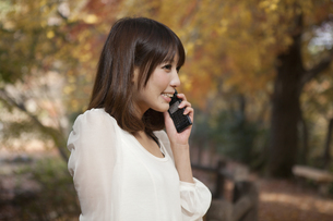 秋の紅葉した公園で立って携帯電話を掛けている女性の素材 [FYI00467256]