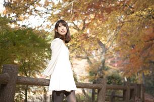 秋の紅葉した公園で立っている女性の素材 [FYI00467258]
