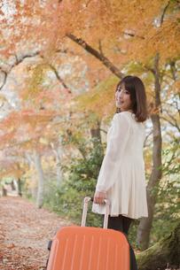 秋の紅葉した公園でトランク引っ張る女性の素材 [FYI00467269]