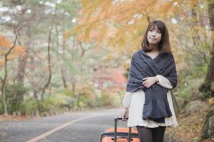秋の紅葉した公園でトランクを引いている女性の素材 [FYI00467270]