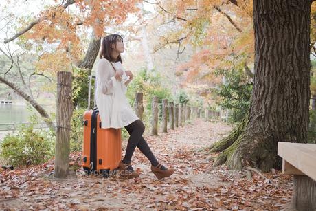 秋の紅葉した公園でトランクに座って本を読む女性の素材 [FYI00467272]