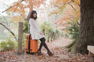 秋の紅葉した公園でトランクに座って本を読む女性の素材 [FYI00467273]