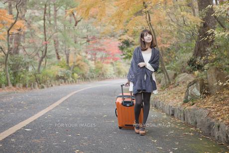 秋の紅葉した公園でトランクを引いている女性の素材 [FYI00467285]
