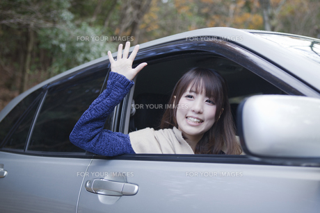 秋の紅葉の公園の駐車場で車の運転をする女性の写真素材 [FYI00467331]