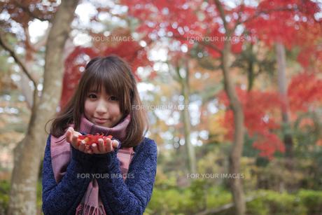 秋の紅葉の公園で落ち葉を手のひらに乗せる笑顔の女性の写真素材 [FYI00467346]