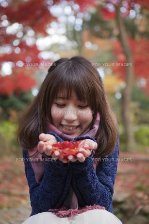 秋の紅葉の公園で落ち葉を手のひらに乗せる笑顔の女性の写真素材 [FYI00467362]