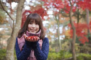 秋の紅葉の公園で落ち葉を手のひらに乗せる笑顔の女性の写真素材 [FYI00467366]