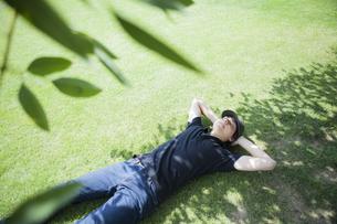 木陰の芝生に仰向けに寝転ぶ男性の写真素材 [FYI00467571]