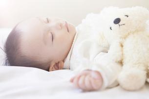 ぬいぐるみと眠る赤ちゃんの写真素材 [FYI00468075]