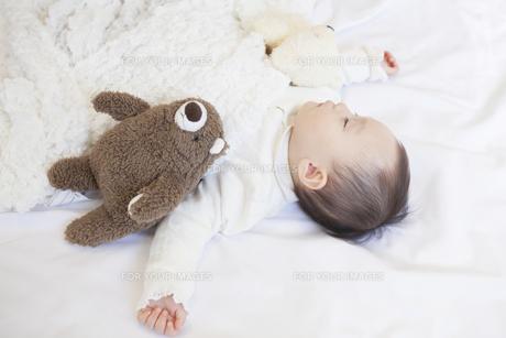 ぬいぐるみと眠る赤ちゃんの写真素材 [FYI00468095]