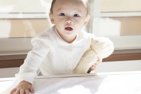 立ち上がる赤ちゃんの写真素材 [FYI00468156]