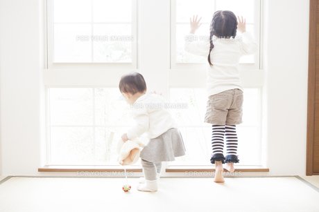 窓の外を見る姉妹の写真素材 [FYI00468204]