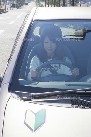 初心者マークを貼って運転する女性の写真素材 [FYI00468271]