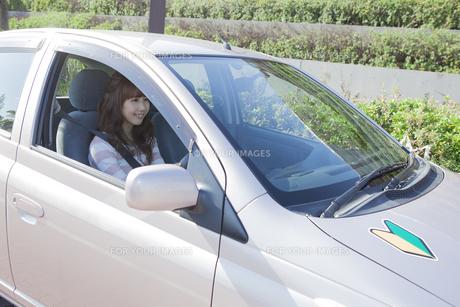 初心者マークを貼って運転する女性の写真素材 [FYI00468299]