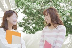 友達と会話をする学生の写真素材 [FYI00468335]