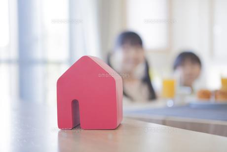 積み木の家と住宅のイメージの写真素材 [FYI00468536]