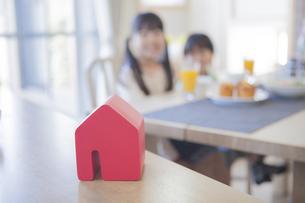 積み木の家と住宅のイメージの写真素材 [FYI00468540]