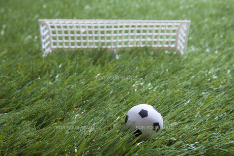 芝生とサッカーの素材 [FYI00468714]