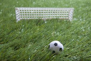 芝生とサッカーの写真素材 [FYI00468714]