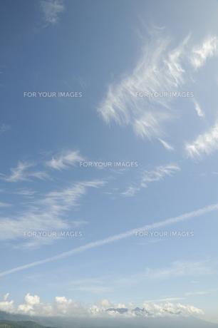 青空と飛行機雲の写真素材 [FYI00469410]