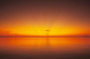 モルディブの日の出の写真素材 [FYI00469845]