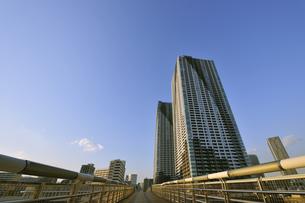 朝潮小橋と高層タワーマンションの写真素材 [FYI00470011]