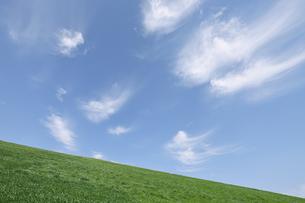 草原とほうき雲の写真素材 [FYI00470069]