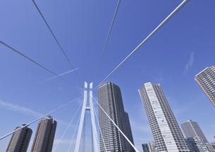 辰巳桜橋と東雲の高層タワーマンション群の写真素材 [FYI00470161]