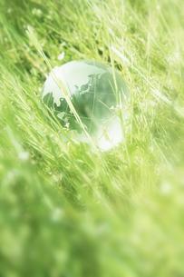 新緑とクリスタル地球儀の写真素材 [FYI00470187]