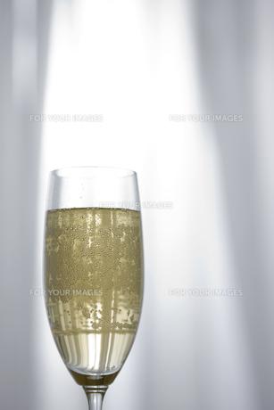シャンパンが入ったグラスの素材 [FYI00470253]