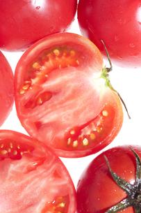 トマトの素材 [FYI00470288]