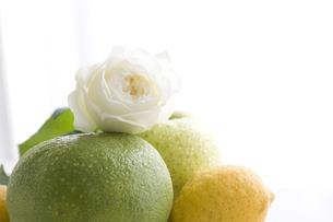 グレープフルーツと青りんごとレモンの上にのせたバラの素材 [FYI00470355]