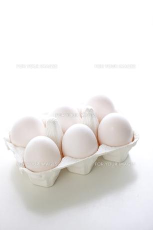 ケースに入った卵の写真素材 [FYI00470369]