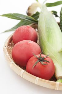 ザルに盛られたトマトとトウモロコシとゴーヤと枝豆とキュウリの写真素材 [FYI00470388]